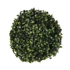 Yeşil Top Bitki Orta Boy