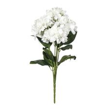 Beyaz Menekşe Demeti