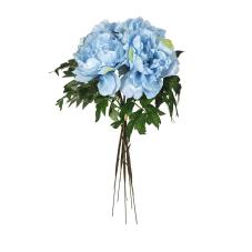 Şakayık Çiçeği Mavi