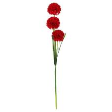 Kır Çiçekli Kırmızı Begonya Demeti