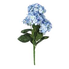 Mavi Menekşe Demeti