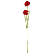 Uzun Saplı Kırmızı Kartopu Çiçeği