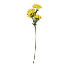 Sarı Krizantem Demeti