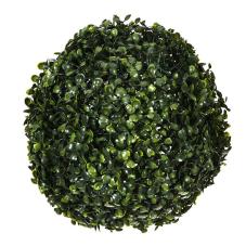 Yeşil Top Bitki Büyük Boy